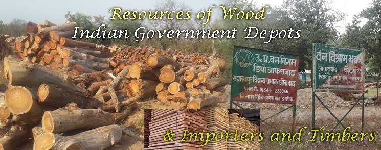 Resources of Wood for Urns